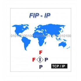 FIP - IP